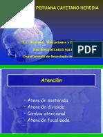 CLASE 4.1  La Atención Alteraciones y Exploración.ppt