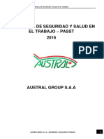 335685192-passt.docx