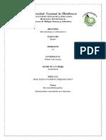Revisión Bibliográfica y el tema de investigación.docx