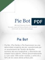 pie bot pdf.pptx
