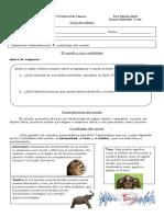 Guía de trabajo Ciencias 3° Sonido