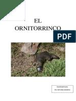 EL-ORNITORRINCO.pdf