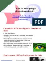 A Antropologia e a Sociologia Das Emoções No Brasil Aula 3