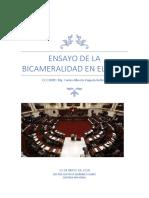 Ensayo de La Bicameralidad en El Peru