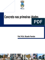 FERREIRA. Concreto nas Primeiras Idades.pdf