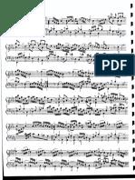 rosef.pdf