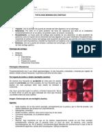 1. Patologi_a Benigna de Esofago