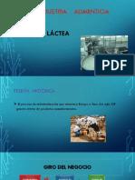 Industria Alimenticia (2)