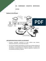 Cuestionario de Sulfatos y Sulfuros