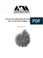 Foraminiferos en la Costa de Chamela, Jalisco.