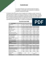 FLUJOS DE CAJA.docx