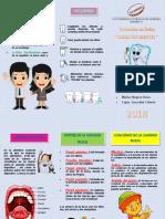 TRIPTICO BOCA.pdf