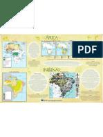 Cartaz AFRO IND Mapa