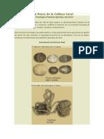Agricultura y la Pesca de la Cultura Caral.docx