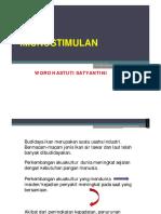 30746_IMUNOSTIMULAN.pdf