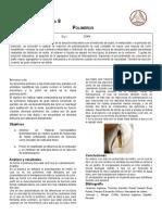 Practica No.8 Polimeros