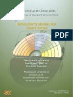 Elabn_d_proyectos_y_estrategias_educativas.pdf