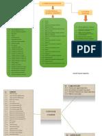 Plan de Cuentas , Organizador .