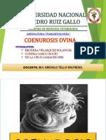 COENUROSIS OVINA.pptx
