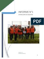 informe de extracción de muestra- mecánica de suelos 1