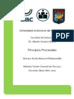 Principios Procesales - Teoría General del Proceso