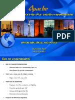 3469_110609 Ruiz UIA Gas No Convencional (9-jun-11) (1).pdf