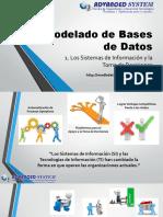 01 Los Sistemas de Información (1)