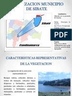 Fitorremediacion_presentacion_final.pptx