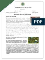Trabajo #1 Hidroeléctricas Del Ecuador