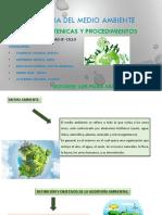 NORMASTECNICAS Y PROCEDIEMNTO DE AMA_expo.pdf