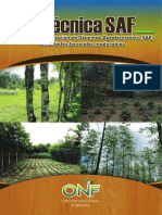 Guia SAF.pdf