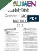 ICSE RESUMEN CICOGNA Módulo I