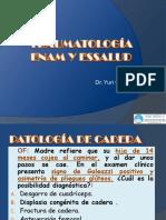 Traumatología i II III IV v Plus