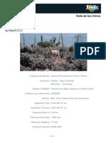 Valle de los Cirios.pdf