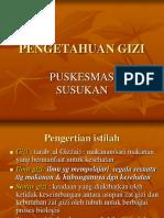 Pengetahuan Gizi