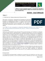 Tema 17 Proteccion Civil