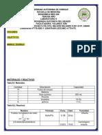 Informe 9 succinasa