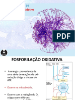 Fosforilacao oxidativa