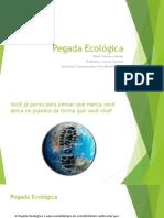 Pegada Ecológica.pptx