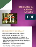 Intoxicatia cu ciuperci (1).pptx