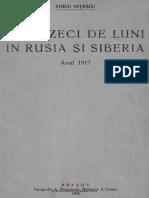 Voicu Nitescu - Douazeci de luni in Rusia si Siberia - Anul 1917 - vol.1 - 1926