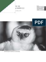 06 Conservación de Las Aves de Acambuco