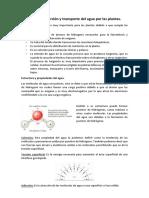 Ecofisiologia 1