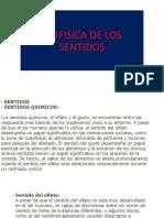 BIO DE SENTIDOS.pptx