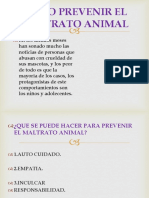 Como Prevenir El Maltrato Animal