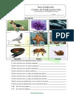 1 - Diversidade Dos Animais - Teste Diagnóstico (3)