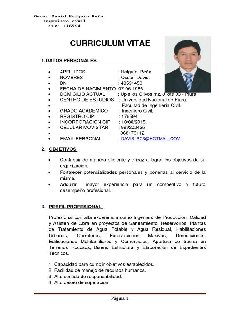 Increíble Ingeniero De Escritorio Curriculum Vitae Pdf Ornamento ...