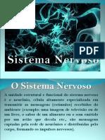 Slides Sistema Nervoso 8 Anos