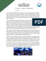 corales.pdf