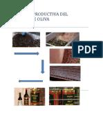 CADENA PRODUCTIVA DEL OLIVA.pdf